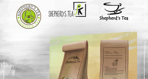 Shepherd's Tea - Logo Design variations